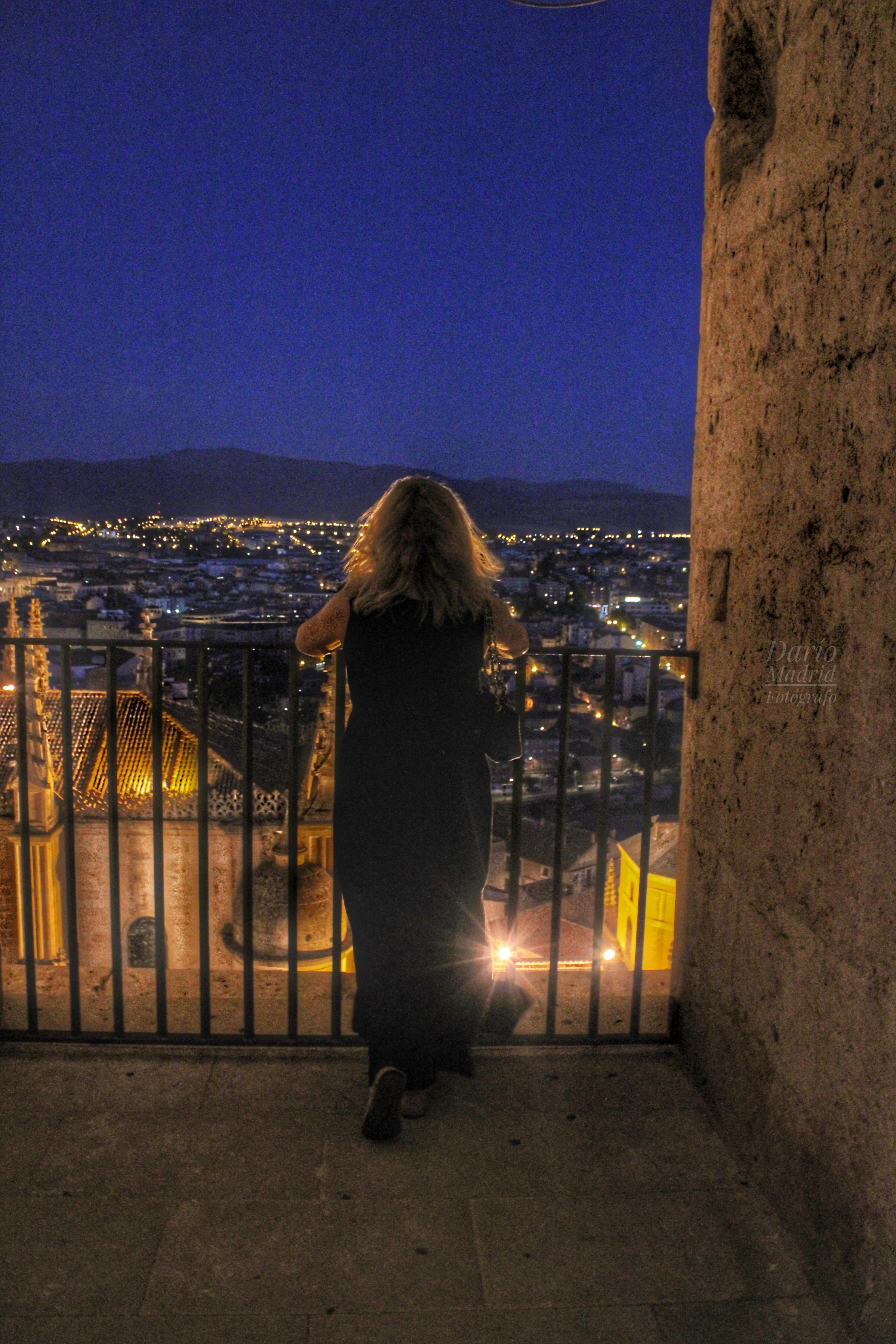 Vistas desde el Campanario de la Catedral de Segovia
