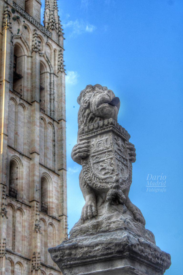 León portando el Escudo del Reino de Castilla en las cercanías de la Catedral de Segovia