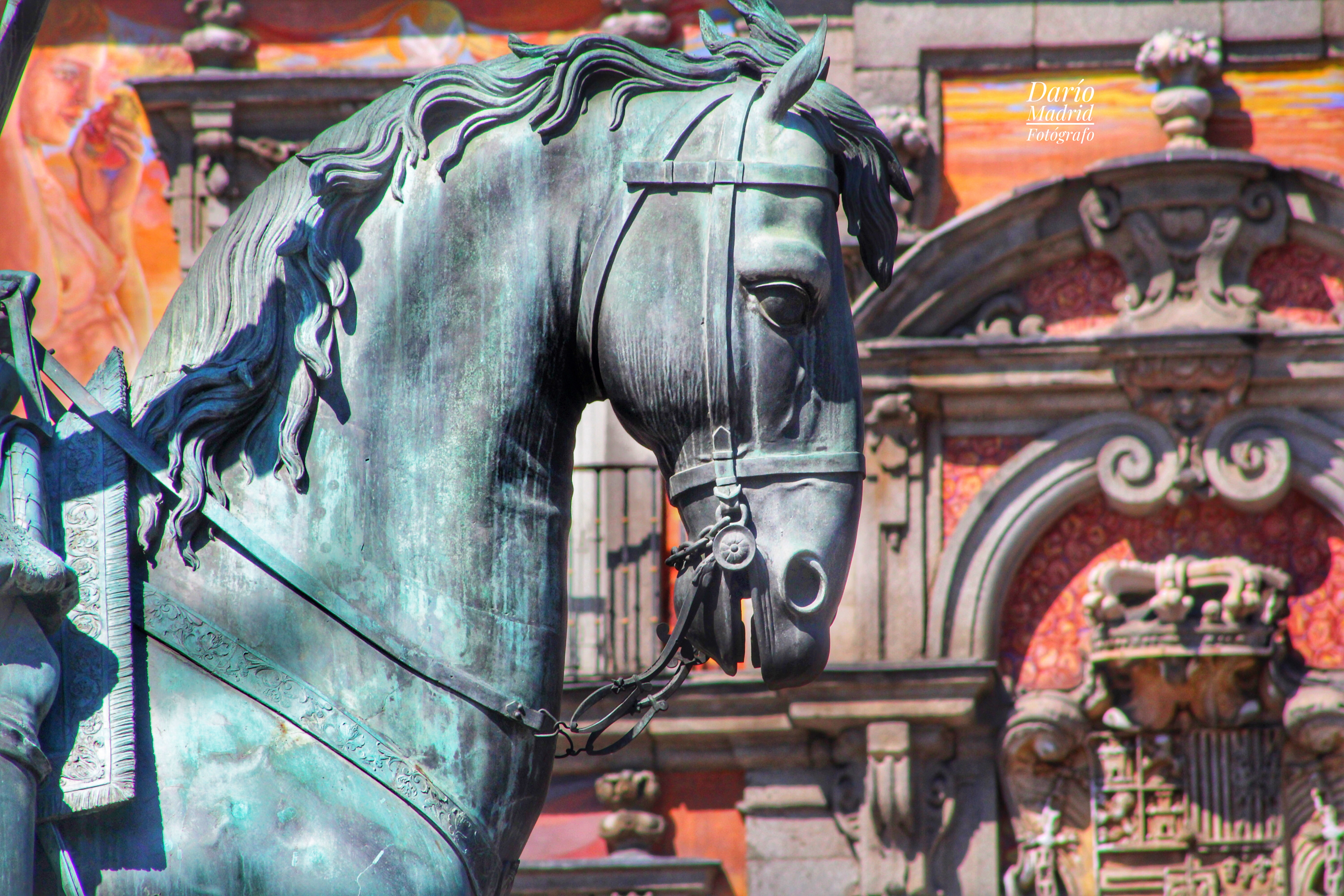 Caballo de la Estatua de Felipe III de la Plaza Mayor de Madrid